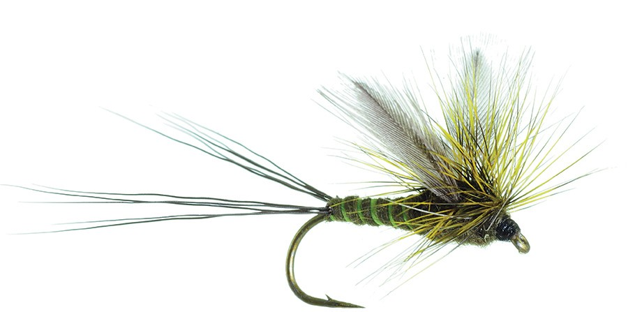 umpqua-green-drake-fly-pattern1